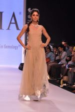 Model walk the ramp for Gia on Day 3 of IIJW 2013 on 6th Aug 2013 (89).JPG
