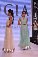 Model walk the ramp for Gia on Day 3 of IIJW 2013 on 6th Aug 2013 (95).JPG