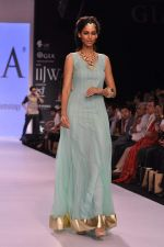 Model walk the ramp for Gia on Day 3 of IIJW 2013 on 6th Aug 2013 (98).JPG