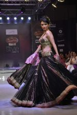 Anaida walk the ramp for Mumtaz Khan at the Signature Premier Pune Style Week 2013 on 19th Aug 2013 (26).JPG