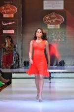Model walk the ramp for Women_s Achievers Award at the Signature Premier Pune Style Week 2013 on 19th Aug 2013 (5).JPG
