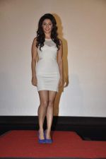 Manjari Phadnis at Anubhav Sinha_s 3D film Warning in Mumbai on 21st Aug 2013 (124).JPG