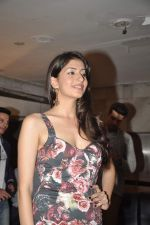Nandini Vaid at the launch of Horror story film in Tulip Star, Mumbai on 21st Aug 2013 (28).JPG