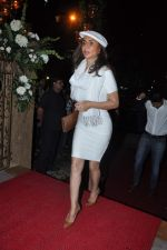 Parmeshwar Godrej at Queenie_s store launch in Mumbai on 21st Aug 2013 (122).JPG