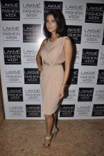 on Day 3 at LFW 2013 in Grand Haytt, Mumbai on 25th Aug 2013 (240).JPG