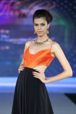 Model walks for Riddhi-Siddhi at The Style Walk at LFW 2013 Day 6 in Grand Haytt, Mumbai on 28th Aug 2013 (428).JPG