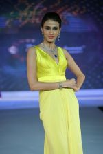 Model walks for Riddhi-Siddhi at The Style Walk at LFW 2013 Day 6 in Grand Haytt, Mumbai on 28th Aug 2013 (431).JPG