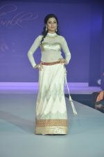 Model walks for Riddhi-Siddhi at The Style Walk at LFW 2013 Day 6 in Grand Haytt, Mumbai on 28th Aug 2013 (476).JPG