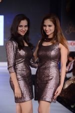 Model walks for Riddhi-Siddhi at The Style Walk at LFW 2013 Day 6 in Grand Haytt, Mumbai on 28th Aug 2013 (516).JPG