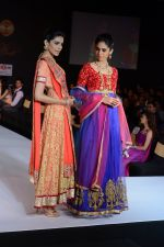 Model walks for Riddhi-Siddhi at The Style Walk at LFW 2013 Day 6 in Grand Haytt, Mumbai on 28th Aug 2013 (543).JPG