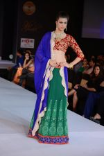 Model walks for Riddhi-Siddhi at The Style Walk at LFW 2013 Day 6 in Grand Haytt, Mumbai on 28th Aug 2013 (548).JPG