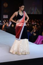 Model walks for Riddhi-Siddhi at The Style Walk at LFW 2013 Day 6 in Grand Haytt, Mumbai on 28th Aug 2013 (555).JPG