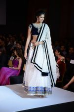 Model walks for Riddhi-Siddhi at The Style Walk at LFW 2013 Day 6 in Grand Haytt, Mumbai on 28th Aug 2013 (560).JPG