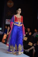 Model walks for Riddhi-Siddhi at The Style Walk at LFW 2013 Day 6 in Grand Haytt, Mumbai on 28th Aug 2013 (541).JPG