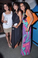 Manasi Scott, Narayani Shastri, Suchitra Pillai at the launch of The Collective style Book - Green Room in Mumbai on 31st Aug 2013 (61).JPG