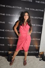 Shenaz Treasury at the launch of THE COLLECTIVE Style book - The Green Room.JPG