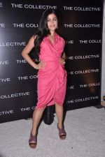 Shenaz Treasurywala at the launch of The Collective style Book - Green Room in Mumbai on 31st Aug 2013 (68).JPG