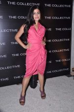 Shenaz Treasurywala at the launch of The Collective style Book - Green Room in Mumbai on 31st Aug 2013 (69).JPG