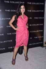 Shenaz Treasurywala at the launch of The Collective style Book - Green Room in Mumbai on 31st Aug 2013 (70).JPG