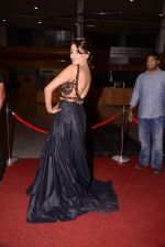 at South Indian International Movie Awards 2013 Red Carpet Day 2 on 12th Sept 2013(355).JPG