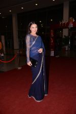 at South Indian International Movie Awards 2013 Red Carpet Day 2 on 12th Sept 2013(363).JPG