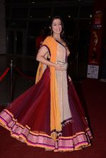 at South Indian International Movie Awards 2013 Red Carpet Day 2 on 12th Sept 2013(383).JPG