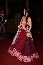 at South Indian International Movie Awards 2013 Red Carpet Day 2 on 12th Sept 2013(384).JPG