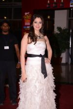 at South Indian International Movie Awards 2013 Red Carpet Day 2 on 12th Sept 2013(389).JPG