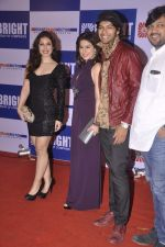 Amrita Raichand at Yogesh Lakhani_s birthday bash in Lalit Hotel, Mumbai on 25th Sept 2013 (164).JPG