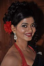at item song shoot for Meinu Ek Ladki Chhahiye in Future Studio, Mumbai on 1st Oct 2013 (51).JPG