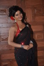 at item song shoot for Meinu Ek Ladki Chhahiye in Future Studio, Mumbai on 1st Oct 2013 (47).JPG