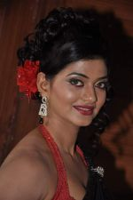 at item song shoot for Meinu Ek Ladki Chhahiye in Future Studio, Mumbai on 1st Oct 2013 (52).JPG