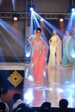 Model walks for Manali Jagtap designer at IIBS on 5th Oct 2013 (200).JPG