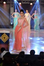 Model walks for Manali Jagtap designer at IIBS on 5th Oct 2013 (202).JPG