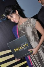 Chitrangada Singh launch India Realty Yearbook & Real Leaders at The premier Indian Realty Awards 2013 in New Delhi on 8th Oct 2013 (21).JPG