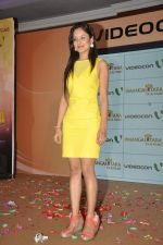 Puja Banerjee at the launch of Govinda_s music album Gori Tere Naina in Mumbai on 7th Oct 2013 (62).JPG