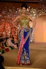 at Abu Jani_s The Golden Peacock show for Sahachari Foundation in Mumbai on 7th Oct 2013 (126).JPG