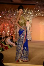 at Abu Jani_s The Golden Peacock show for Sahachari Foundation in Mumbai on 7th Oct 2013 (128).JPG