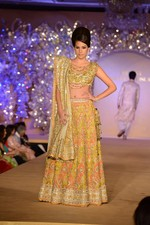 at Abu Jani_s The Golden Peacock show for Sahachari Foundation in Mumbai on 7th Oct 2013 (42).JPG