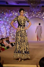 at Abu Jani_s The Golden Peacock show for Sahachari Foundation in Mumbai on 7th Oct 2013 (62).JPG