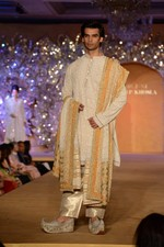 at Abu Jani_s The Golden Peacock show for Sahachari Foundation in Mumbai on 7th Oct 2013 (84).JPG