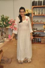 Mana Shetty at Araish in Mumbai on 8th Oct 2013 (11).JPG