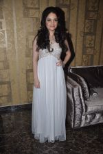 Armeena Rana Khan at Music Launch of Huff Its Too Much in Bandra, Mumbai on 9th Oct 2013 (27).JPG
