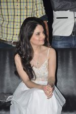 Armeena Rana Khan at Music Launch of Huff Its Too Much in Bandra, Mumbai on 9th Oct 2013 (42).JPG