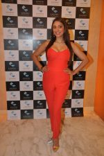 Pooja Misra at  dassani jewellery preview in Mumbai on 11th Oct 2013 (54)_52596833ecf5f.JPG