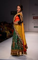 Raima Sen walks for Joy Mitra at Wills day 5 on WIFW 2014 on 13th Oct 2013 (42)_525cb591a8f68.JPG