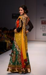 Raima Sen walks for Joy Mitra at Wills day 5 on WIFW 2014 on 13th Oct 2013 (43)_525cb59a5ba0d.JPG