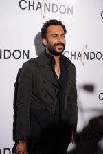 Aki Narula at Moet Hennesey launch of Chandon wines made now in India in Four Seasons, Mumbai on 19th Oct 2013 (31)_5263ebad08eb3.JPG
