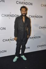 Aki Narula at Moet Hennesey launch of Chandon wines made now in India in Four Seasons, Mumbai on 19th Oct 2013