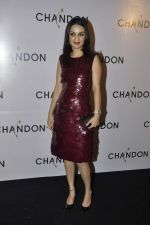 Anu Dewan at Moet Hennesey launch of Chandon wines made now in India in Four Seasons, Mumbai on 19th Oct 2013